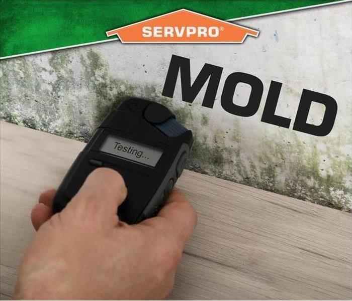 handheld mold testing instrument being held up to drywall with apparent visual mold. Overlay of Servpro logo and word MOLD