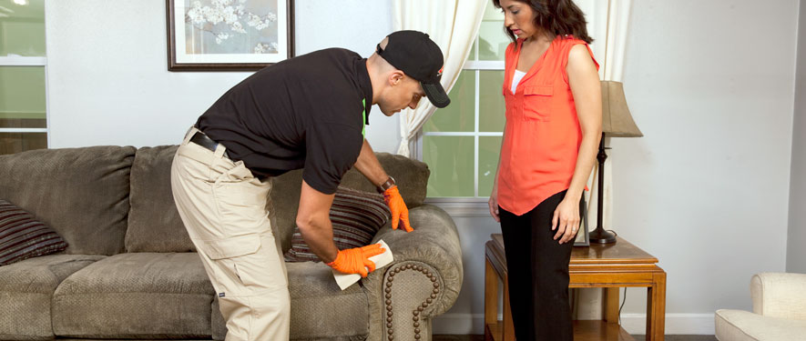 Medford, OR carpet upholstery cleaning
