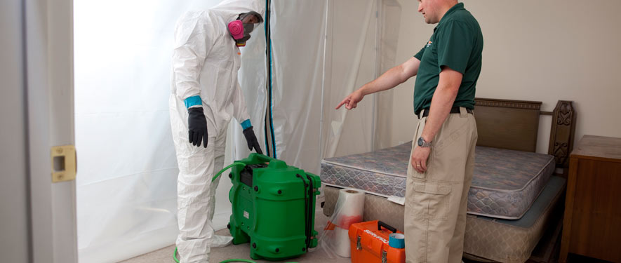 Medford, OR mold removal process